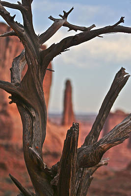 Photograph - Peeking Through To Park Ave At Arches National Monument by SC Heffner