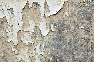 Paper Photograph - Peeling Paint Background by Tim Hester