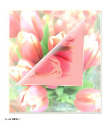 Peels Of Spring Art Print