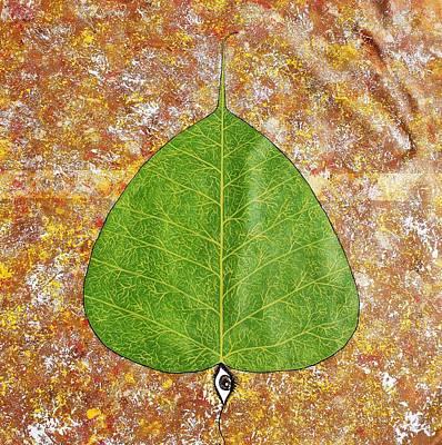 Leaf Painting - Peepal  by Sumit Mehndiratta