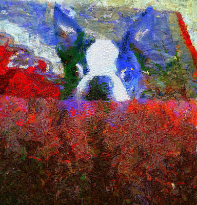 Water Dogs Mixed Media - Peeping Jack by Paige Harre