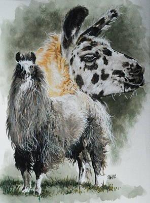 Llama Mixed Media - Peevish by Barbara Keith