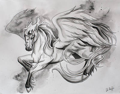 Pegasus Drawing - Pegasus by Amber Hoeffer