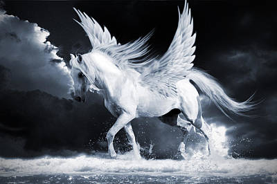 Photograph - Pegasus by Ethiriel  Photography