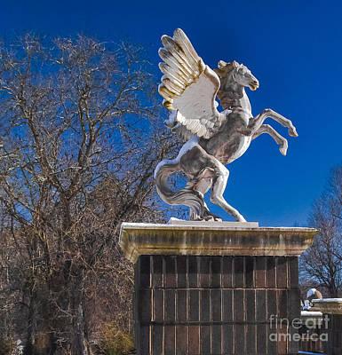 Photograph - Pegasus by Scott Hervieux