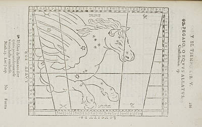 Pegasus Star Constellation Print by British Library
