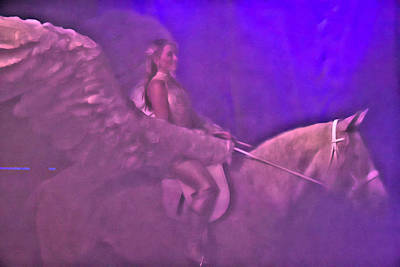 Photograph - Pegasus Winged by Alice Gipson