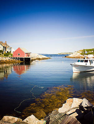 Photograph - Peggy's Cove by Sara Frank