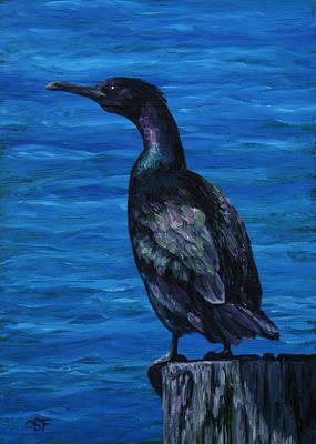Wildlife Painting - Pelagic Cormorant by Crista Forest
