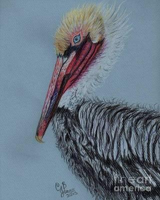 Painting - Pelican 3 by Chris Bajon Jones