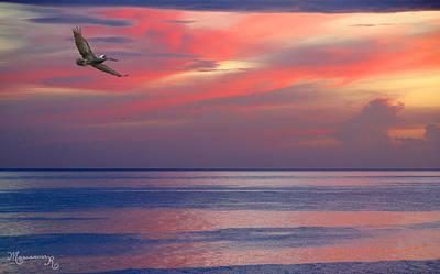 Pelican At Sunset Art Print by Mariarosa Rockefeller