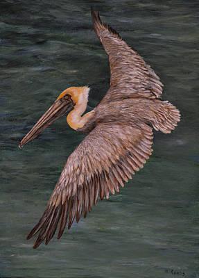 Painting - Pelican Fishing by Nancy Lauby