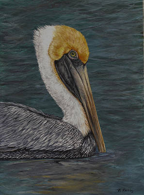 Painting - Pelican Floating In The Bay by Nancy Lauby