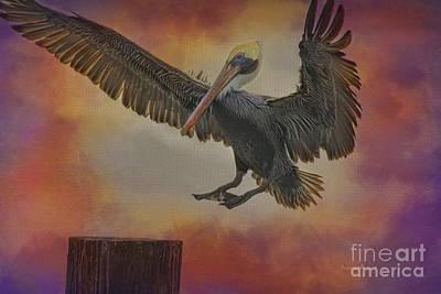 Pelican Grace Art Print by Deborah Benoit