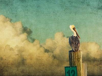 Photograph - Pelican In The Clouds by Alice Gipson