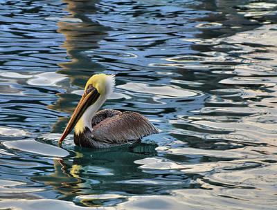 Pelican Monet Art Print by Debra and Dave Vanderlaan