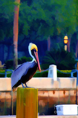 Pelican On Post Artistic Art Print by Dan Friend