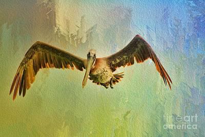 Deborah Brown Photograph - Pelican On Texture by Deborah Benoit