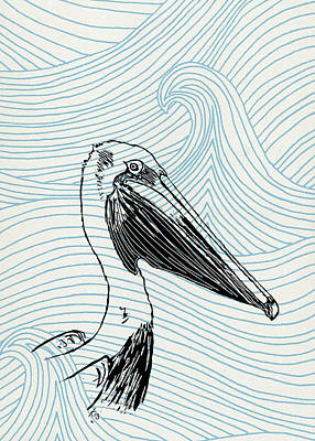 Pelican Drawing - Pelican On Waves by Konni Jensen
