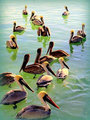 Of Birds Photograph - Pelican Party by Karen Wiles