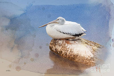 Socialization Digital Art - Pelican Peace by Betty LaRue