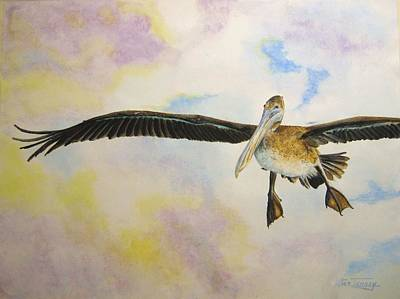 Painting - Pelican by Stan Tenney