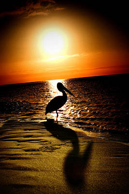 Art Print featuring the photograph Pelican Sunrise by Yew Kwang