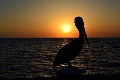 Photograph - Pelican Sunset 4 by Richard Zentner