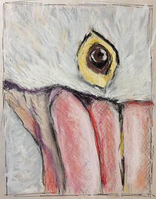 Drawing - Pelican's Gaze - Study In Pastel by Cristel Mol-Dellepoort