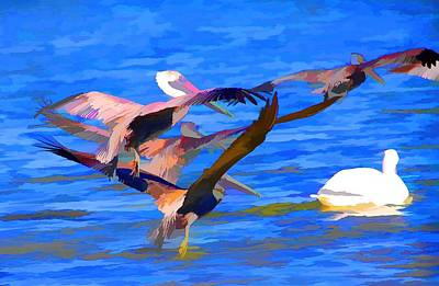 Photograph - Pelicans In Flight by Audreen Gieger