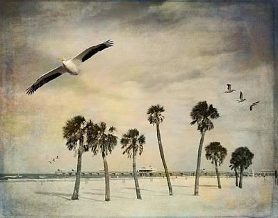 Pelicans In Flight Art Print