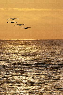 Art Print featuring the photograph Pelicans Ocean And Sunsetting by Tom Janca