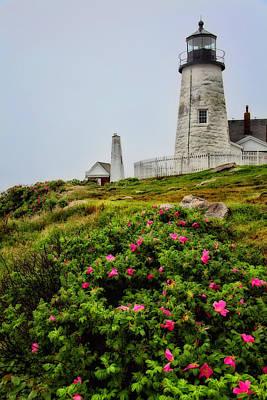 Coastal Maine Photograph - Pemaquid Point by Karol Livote