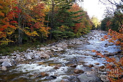 Photograph - Pemigewasset In Autumn by Kerri Mortenson