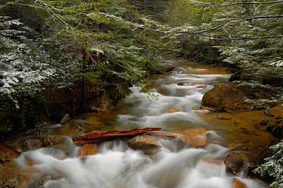 Pemigewasset River In Franconia Notch Art Print