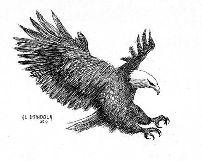 Drawing - Pen And Ink Bald Eagle by Al Intindola