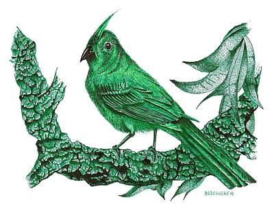 Forest Drawing - Pen And Ink Drawing Of Green Bird by Mario Perez