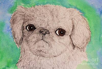 Painting - Pen And Ink Pug by Melinda Etzold