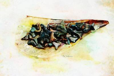 Casey Digital Art - Pen Shell And Sharks Teeth by Barbara Chichester