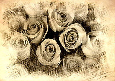 Painting - Penciled Roses by Dennis Buckman