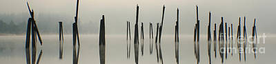 Photograph - Pend Oreille Pilings Pano by Idaho Scenic Images Linda Lantzy