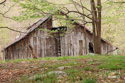 Photograph - Pendleton County Barn by Randy Bodkins