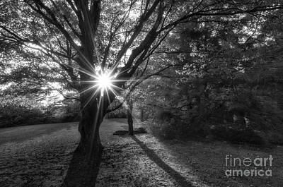 Horizontal Photograph - Pendleton Point D30017158_bw by Kevin Funk