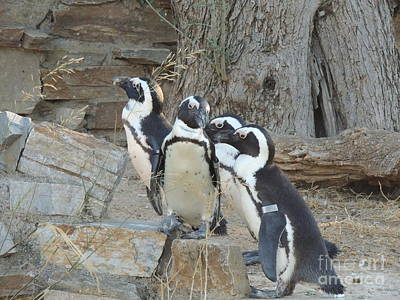 Penguin Friends Original by Paraskevas Momos