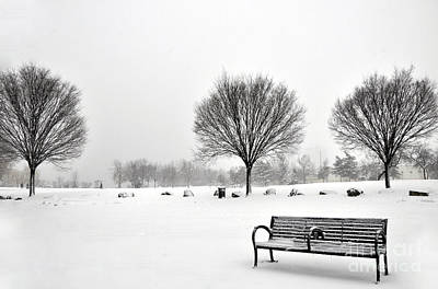 Photograph - Penn Treaty Park Bench by Andrew Dinh