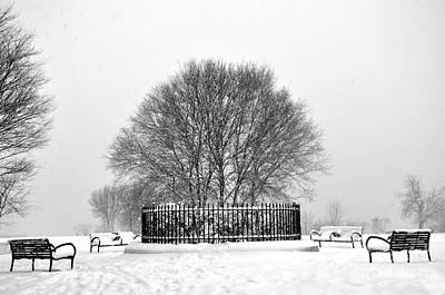 Photograph - Penn Treaty Park Circle by Andrew Dinh