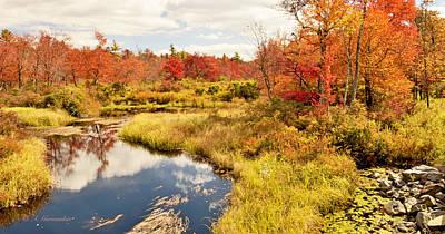 Pennsylvania Autumn Pocono Mountain Stream Art Print by A Gurmankin