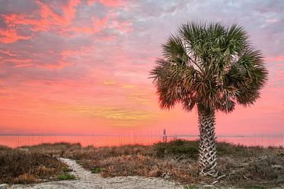 Pensacola Pink Art Print by JC Findley