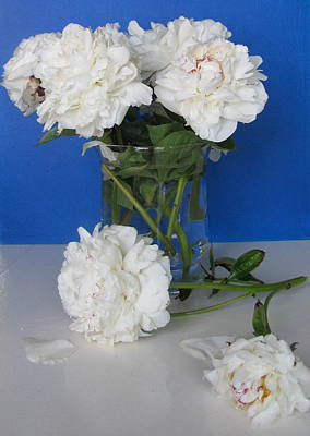 Art Print featuring the photograph Peonies 1 by Margaret Newcomb