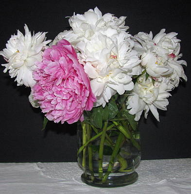 Art Print featuring the photograph Peonies Bouquet 4 by Margaret Newcomb